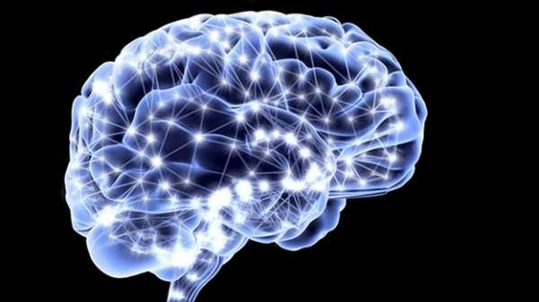 Resultado de imagen de cerebro redes neuronales